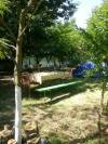 <b>Casa Edenia and Camping</b> Tel: 0746 257 782 - 0746 257 780